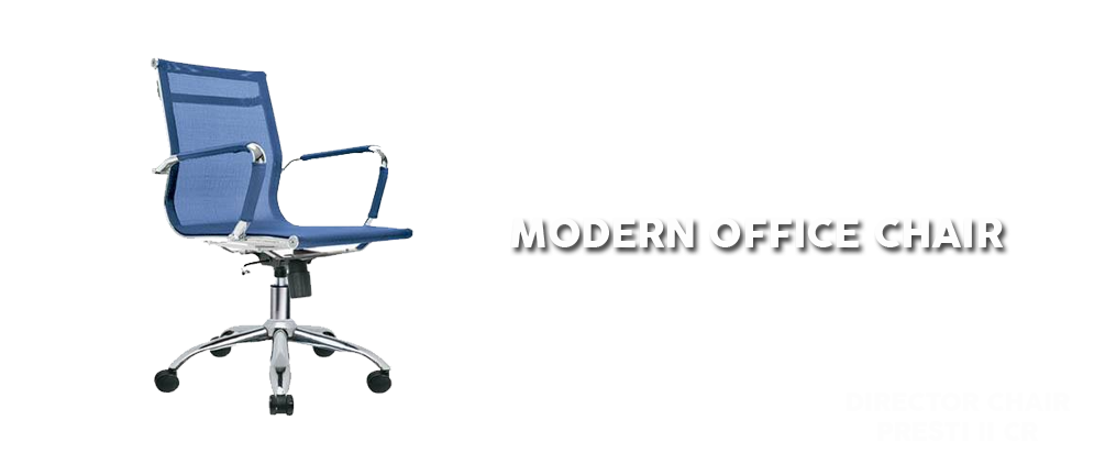 Modern Director / Office Chair by Indachi